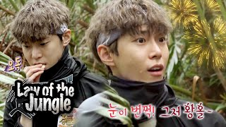 "DoYoung ""If I wasn't an idol, I would've tried to bring salak into Korea"" [Law of the Jungle Ep 390]"