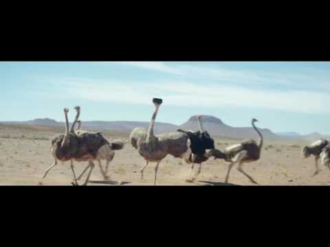 """Samsung """"Ostrich"""""""