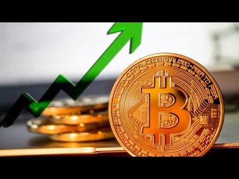 Investors Love Crypto: New Bakkt & Galaxy Bitcoin Products, New Stats – What It Means