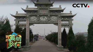 《我的美丽乡村》 20201120 我家住在黄河边|CCTV农业 - YouTube