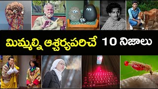 Top 10 Interesting Facts In Telugu I Unknown And Amazing FacTs In Telugu I