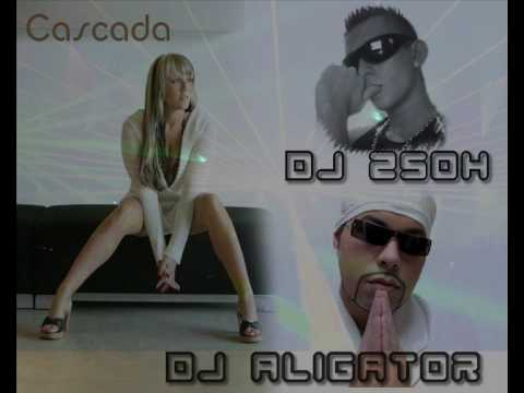 dj aligator kiss my bass. Песня Неизвестен - Cascada ft Dj Aligator - Kiss my Dangerous Bass ( DJ ZSOX Remix 2009 ) в mp3 256kbps
