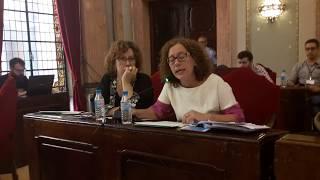 Pleno septiembre 2017 - Soterramiento