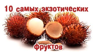 ТОП10 экзотических фруктов, о которых вы ничего не знали