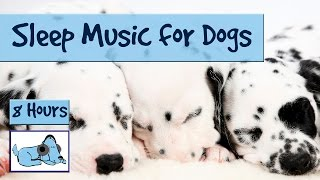 Extra Long Dog Sleep Music Playlist! Over 8 Hours of Sleep Music for Dogs and Puppies