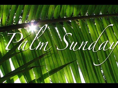 2018 March 25 Palm Sunday
