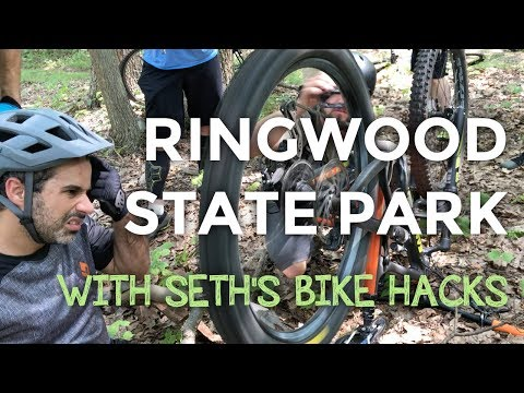 Bees, Seth's Bike Hacks, and the New Jersey Gnar :: Mountain Biking in Ringwood State Park