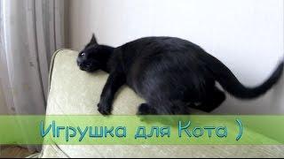 Игрушка для Кота | ПОСЫЛКА С ALIEXPRESS (unboxing)