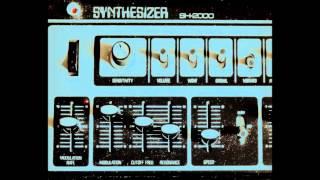 Benge - 1973 Roland SH2000