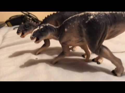 Project Gryposaurus latidens
