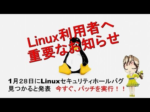 Linux利用者に重要なお知らせ1月28日にLinuxセキュリティ・ホールバグ見つかると発表 今すぐパッチを実行レモン92