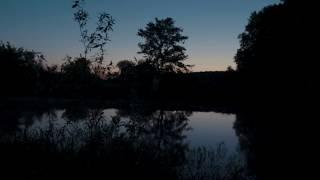 4К Восход солнца - река, пение птиц , успокоение | Утро, Исцеление Нервной Системы