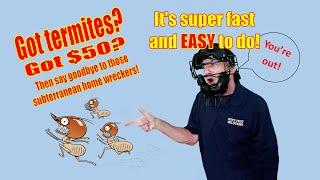 DIY Termite Treatment