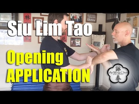 Siu Lim Tao Basic Application