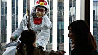 Как Петух и Собака мыли окна на высоте 50 метров в Японии (новости)