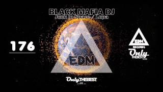 BLACK MAFIA DJ - JUNK IN SPACE / LUPA #176 EDM electronic dance music records 2015