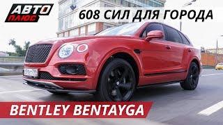 Взгляд филантропа на Bentley Bentayga | Звездный попутчик