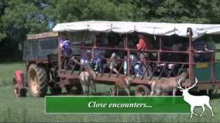 Introduction to Snettisham Park Farm
