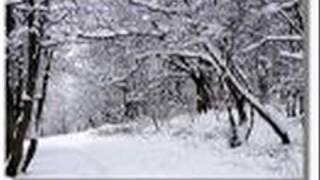 Đêm Tuyết Rơi