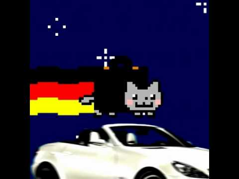 German Nyan cat
