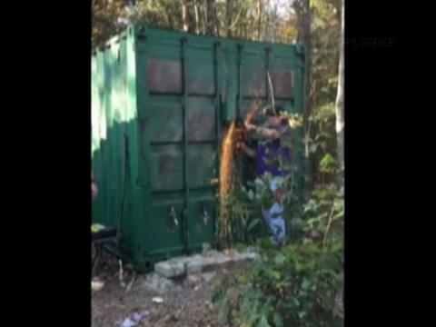 Video Shows Rescue of Rape Victim