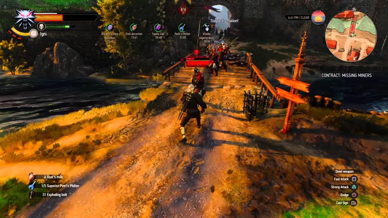 The Witcher 3 Wild Hunt Igni Build