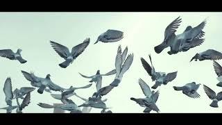 Bashie ft  Amorf ft  Fatih Yilmaz - Umi   ArabicRemix  Resimi