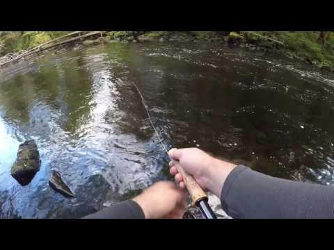 Fly Fishing Ketchikan, Alaska -- Highlights Video