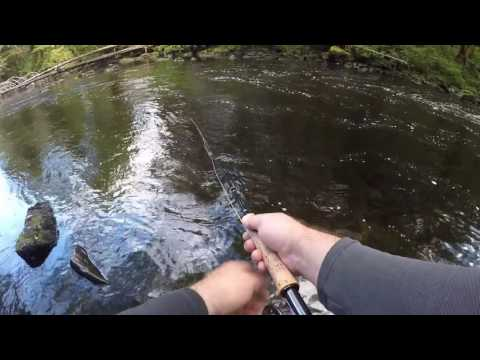 Fly Fishing Ketchikan, Alaska -- Highlights Video