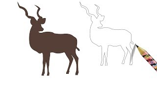 How to Draw a Kudu Animal Drawing Easy - Coloring Page