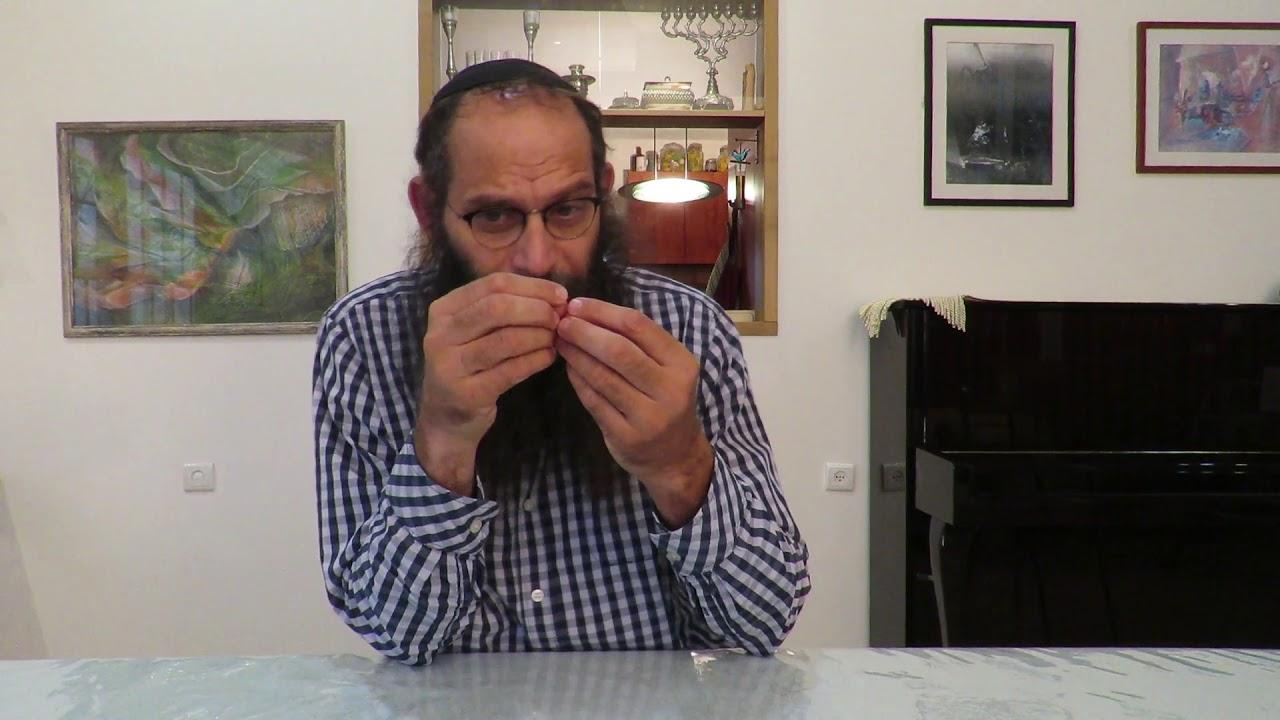 הרב נתן אופנר - דעת כיסוד לתפילה ולהבדלה