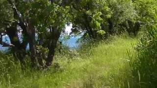 Гурзуф, дикий пляж. Видео об отдыхе в Большой Ялте(, 2013-05-28T05:35:44.000Z)