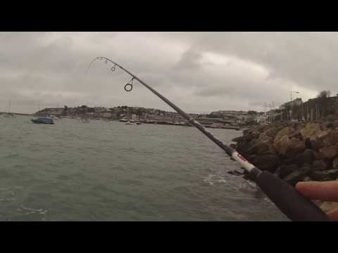 LRF Devon (Light Rock Fishing) - February Fun In Exmouth