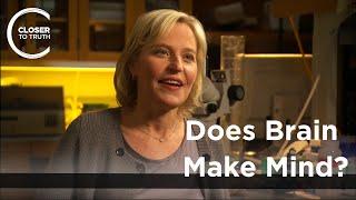 Kelsey Martin - Does Brain Make Mind?