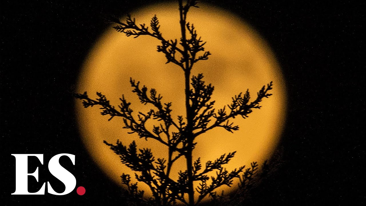 How to see the last supermoon of 2020