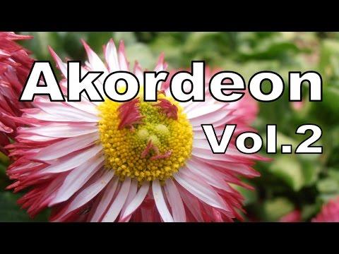 Akordeon Müzikleri Ve En Güzel Çiçekler Vol. 2 (Alaturka Parçalar) HD
