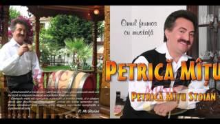 Petrica Mitu Stoian - Colaj muzica populara 2017