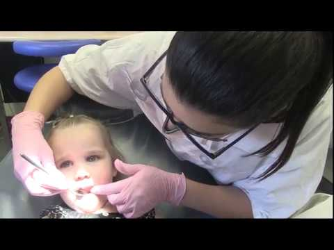 Dental Health Check for Kids