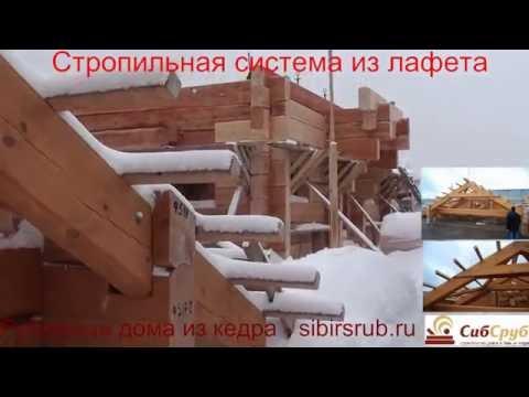 Строительство сруба из лафета кедра большого размера - СибСруб