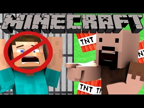 If There Were No Servers In Minecraft
