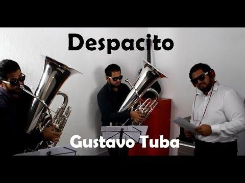 Despacito - Tuba Cover - Luis Fonsi ft. Daddy Yankee [Instrumental]