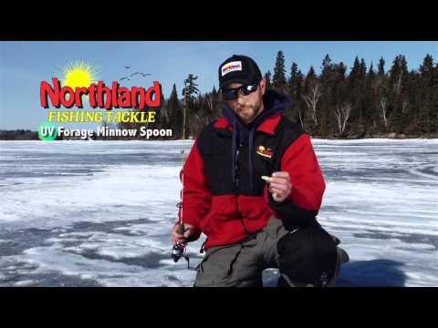 Northland UV Forage Minnow Tip