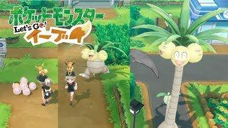 【ピカブイ】タマタマ&ナッシーの連れ歩き! 【ポケモンレッツゴー イーブイ】