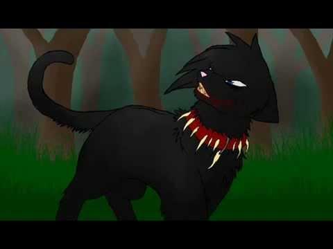 Картинки из мультика коты воители