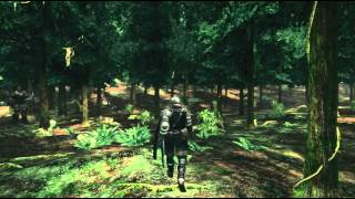 Dark Souls: Prepare to Die - Artorias of the Abyss DLC Official HD game trailer - PC PS3 X360