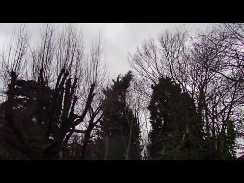 UK storm gale force wind London 2014