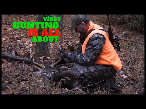 Kentucky Rifle Season Deer Hunt