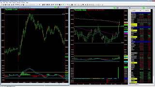 TSLA Profit Taking Opportunity