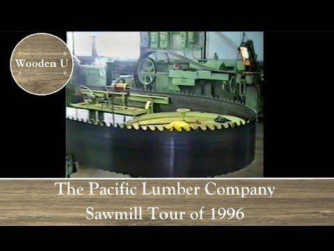 The Pacific Lumber Company Sawmill Tour Of 1996 - Wooden U