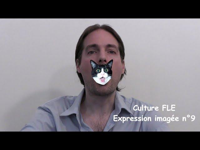 【Culture FLE】Expression imagée n°9
